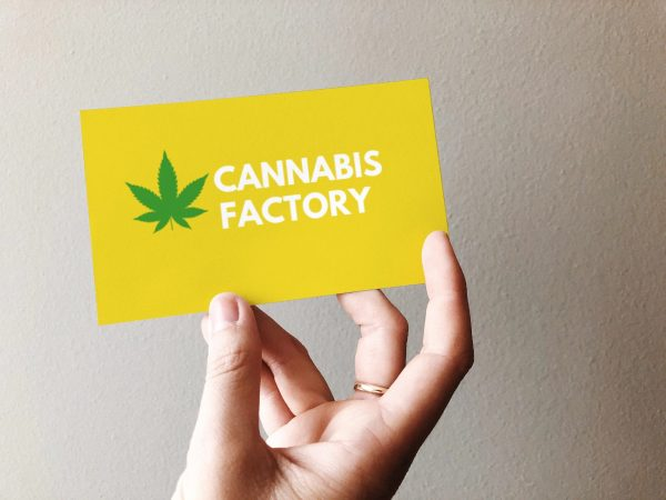 cannabisfactory card view