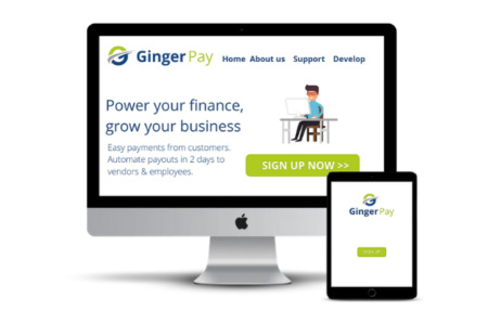 Ginger Pay Multi devices look