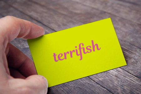 terrisish-card-view-namoxy-2