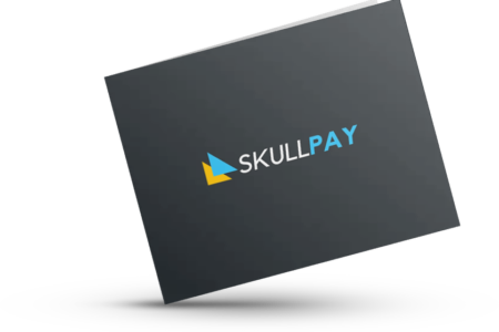skull pay card view 2nd